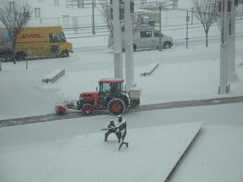 January 2010 016.jpg