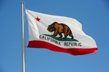 california-flag-bear.jpg