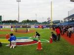 Busy Field