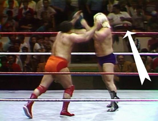 Wrestling in 1986